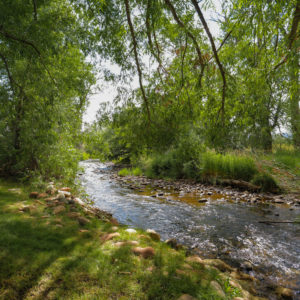 2039-brush-creek-road-eagle-co-mls_size-002-38-brush-creek-1500x1500-72dpi-1
